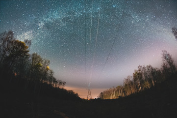 Power line under the starry sky in the woods