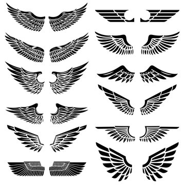 Set of the wings isolated on white background. Design elements for logo, label, emblem, sign, badge. Vector illustration