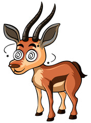 Deer with dizzy face