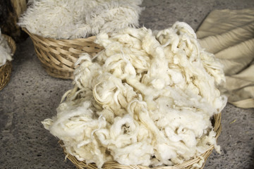 Sheep wool natural