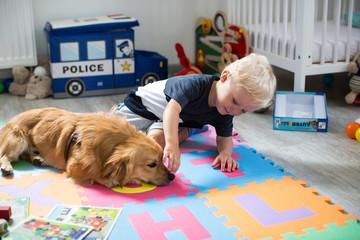 Kind ärgert den Hund