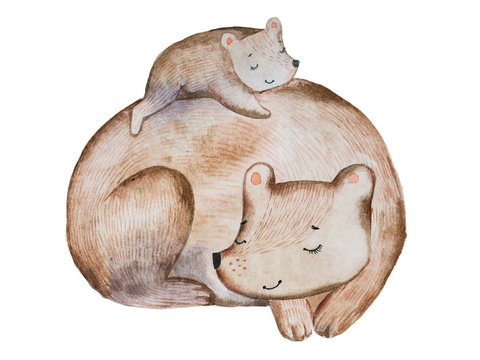 Cute cartoon brown bear and little cub laying on its back sleeping together drawn with watercolor technique.