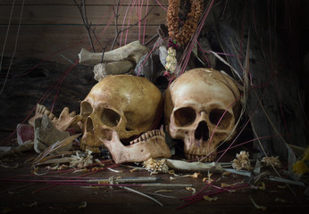 Two skulls with pile of dry wood on the old grave with old wooden wall / Still Life  image and selective focus .