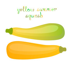 Yellow summer squash.