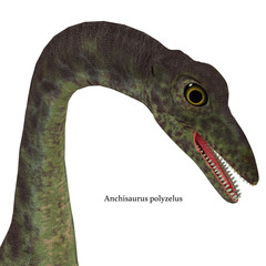 Anchisaurus Jurassic Dinosaur with Font - Anchisaurus was a omnivorous prosauropod dinosaur that lived in the Jurassic Periods of North America, Europe and Africa.