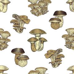 Mushroom hand drawn vector seamlees pattern. Vintage background.