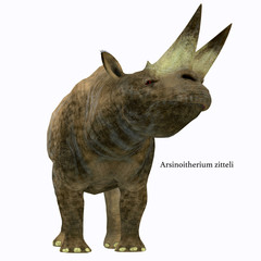 Arsinoitherium Mammal on White with Font - Arsinoitherium was a herbivorous rhinoceros-like mammal that lived in Africa in the Early Oligocene Period.