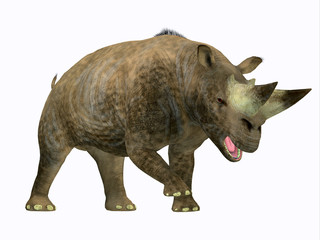 Arsinoitherium Mammal Side Profile - Arsinoitherium was a herbivorous rhinoceros-like mammal that lived in Africa in the Early Oligocene Period.