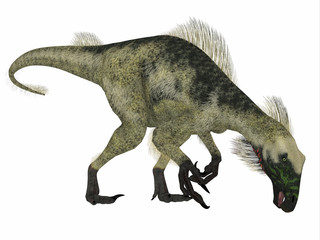 Beipiaosaurus Dinosaur Side Profile - Beipiaosaurus was a herbivorous theropod dinosaur that lived in China in the Cretaceous Period.