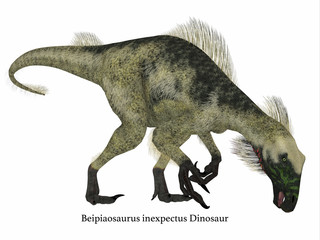 Beipiaosaurus Dinosaur Side Profile with Font - Beipiaosaurus was a herbivorous theropod dinosaur that lived in China in the Cretaceous Period.
