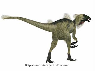 Beipiaosaurus Dinosaur Tail with Font - Beipiaosaurus was a herbivorous theropod dinosaur that lived in China in the Cretaceous Period.