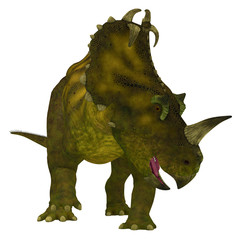 Centrosaurus Dinosaur Neck Frills - Centrosaurus is a herbivorous Ceratopsian dinosaur that lived in Canada in the Cretaceous Period.