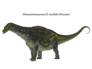 Diamantinasaurus Dinosaur Side Profile with Font - Diamantinasaurus was a herbivorous sauropod dinosaur that lived in Australia during the Cretaceous Period.
