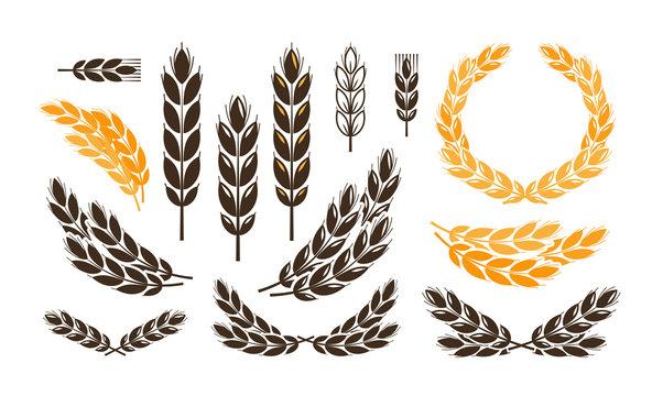 Ear wheat, bread logo or label. Harvest, bakery, bakehouse set icons. Vector illustration