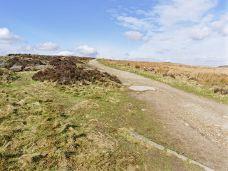 In the Peak District a well trodden path bordered by ferns, grass and bracken  winds gently uphill