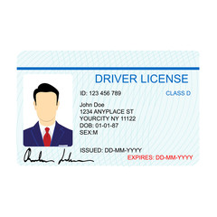 Driver license vector