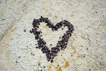 heart made of reddish pebbles symbolizing love in the rock desert wilderness of northern New Mexico