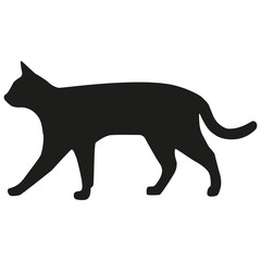 Vector image of a cat. Silhouette of the cat.