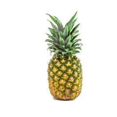 One large tropical sweet pineapple