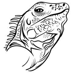 head iguana profile, sketch vector tattoo