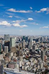 Tokyo with skyline in Tokyo Japan