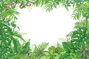 Tropical Plants Rectangle Frame