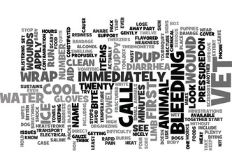 FIRST AID FOR PUPPIES Text Background Word Cloud Concept