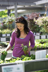 Woman selecting plants at a nursery
