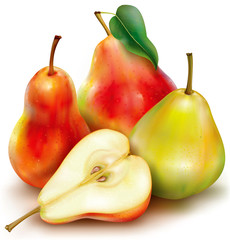 Vector pears on white background