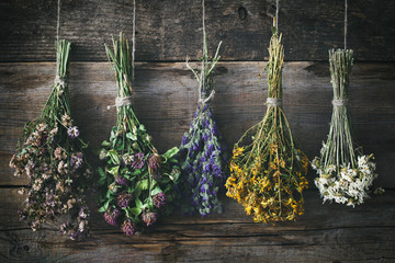 Hanging bunches of medicinal herbs and flowers. Herbal medicine. Retro toned.