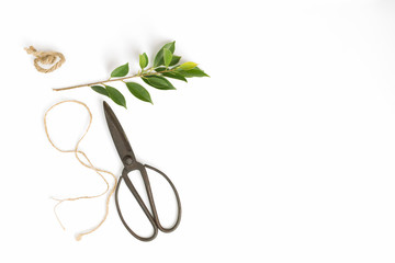 Old scissors and rope on a white background,top view,Flat lay image of handmade concept