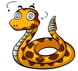 Rattlesnake with dizzy face