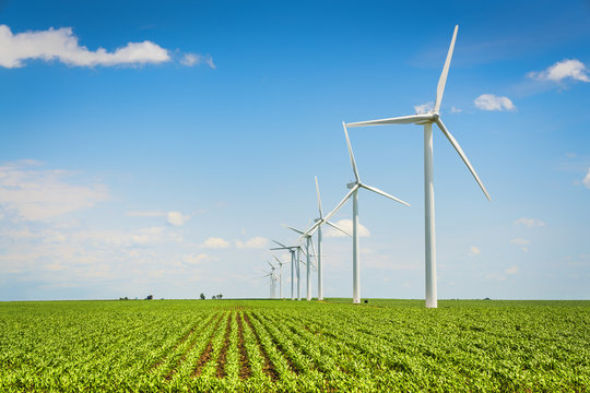 Wind farm and countryside corn field, agriculture industry
