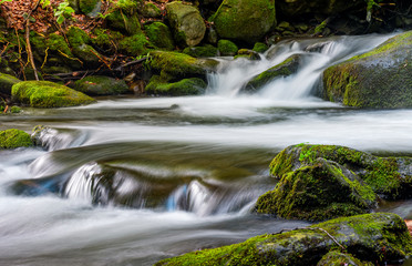 Foto op Canvas cascade on the little stream with stones in forest