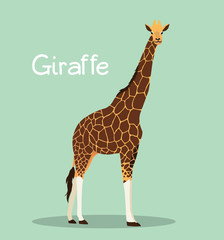 A tall giraffe illustration design on green background.vector
