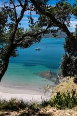Looking through trees onto boats in summer  Bay of Islands, New Zealand, NZ at Urupukapuka Island