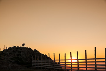 Silhouettes of hikers enjoying sunset view from top of a mountain
