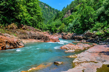 Summer landscape with mountain river