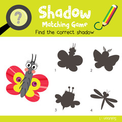 Shadow matching game of Butterfly animals for preschool kids activity worksheet colorful version. Vector Illustration.