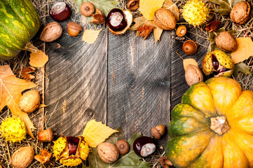 Autumn background with colored leaves, pumpkin, chestnuts, walnut nuts and acorns on wooden boards. Copy space. Top view