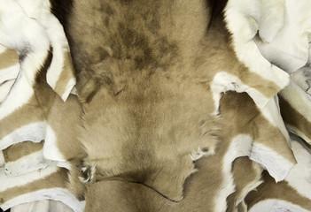 Natural goat skin