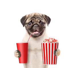 Funny puppy with popcorn and cola. isolated on white background