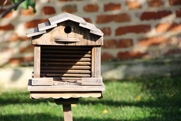 bird feeders. photo