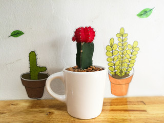 red cactus on cup in coffee shop