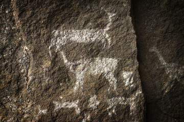 A group of llamas, rupestrian rock art in Sumbay Cave from paleolithic era (6000-8000 BC), Arequipa departement, Southern Peru