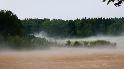 Wind, rain and fog in a few seconds