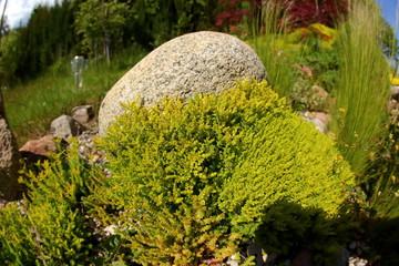 Stone in the garden.