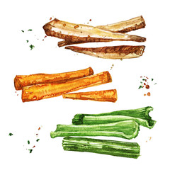 Vegetable sides. Watercolor Illustration.