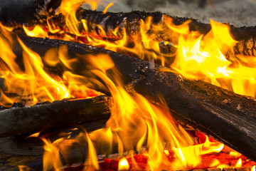 The coals of a campfire in the forest closeup.