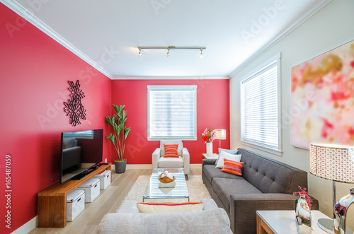 Modern red living room. Interior design. \
